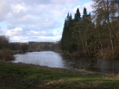 River Eden, Cumbria UK ©AmyFrost