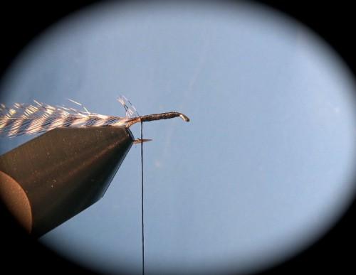 Fliegenbinden Griffith's_Gnat_2