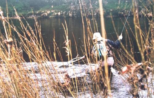Nymphen River Eden Fishing