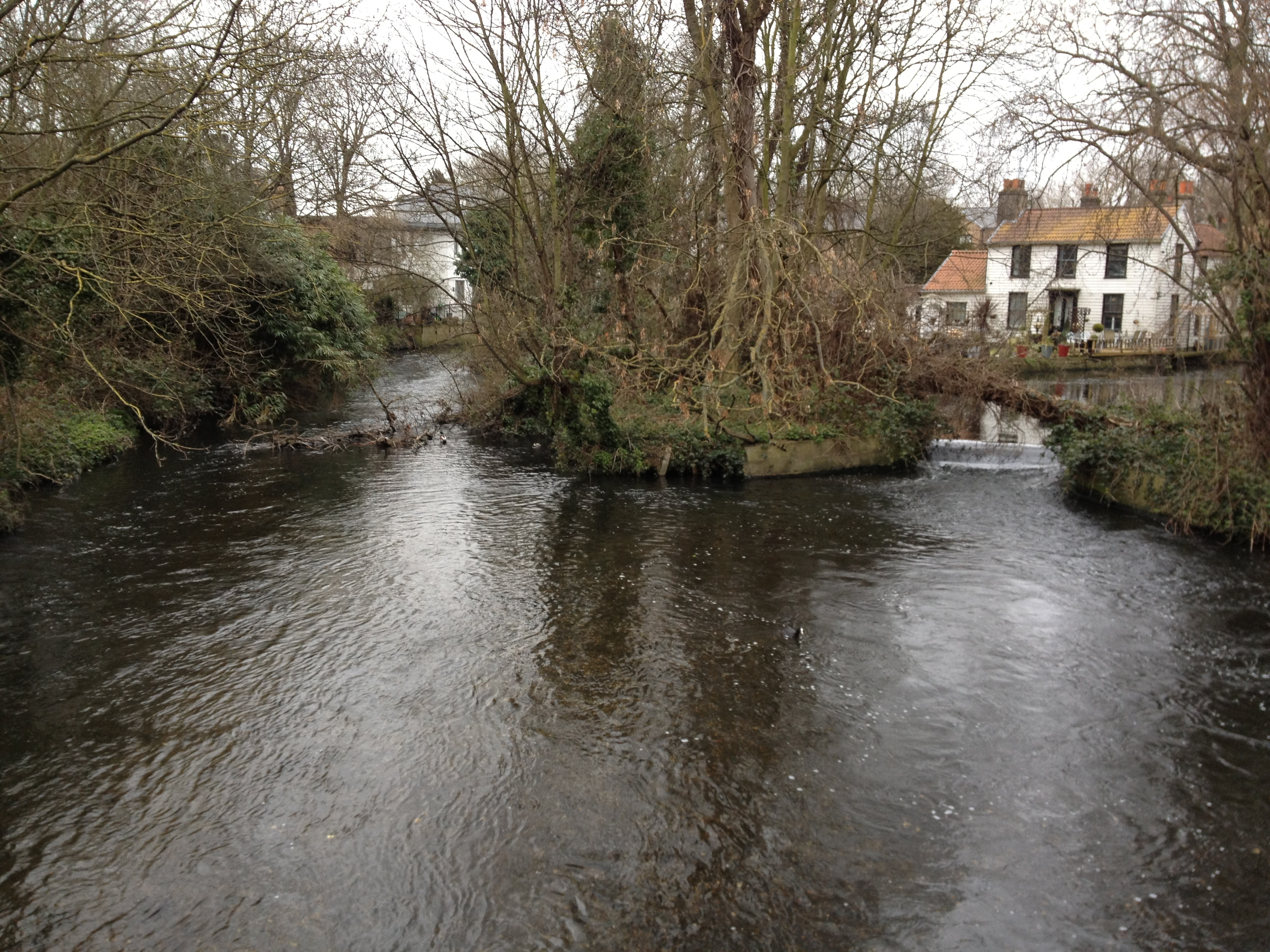 River_Wandle5
