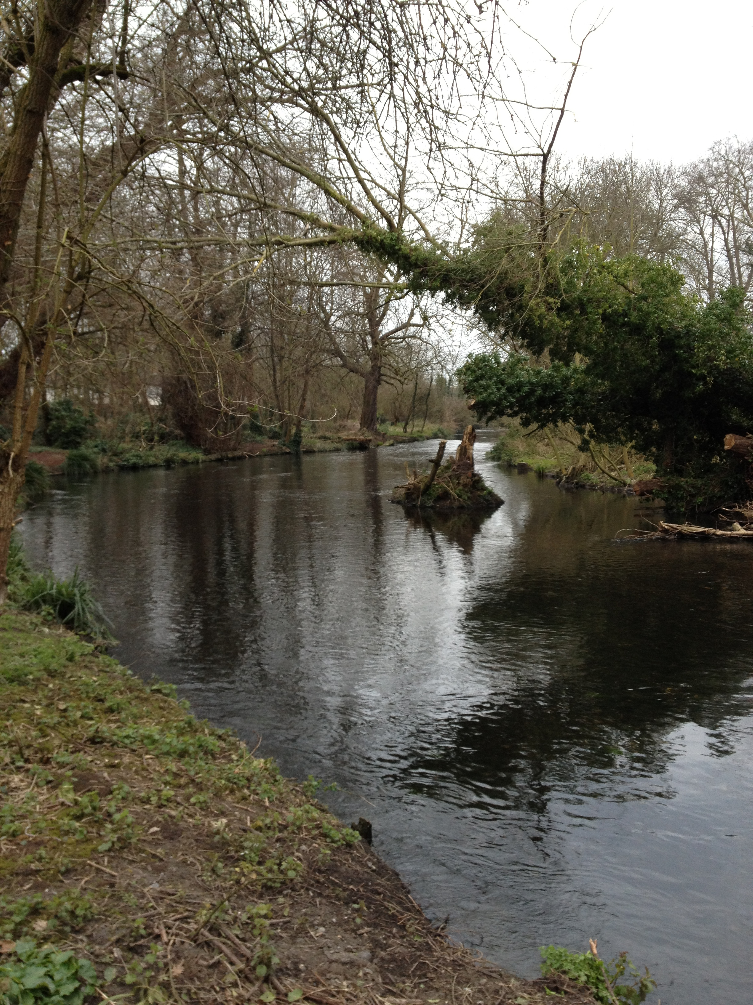 River_Wandle6