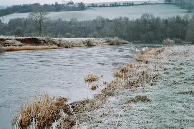 Nymphing_River_Eden