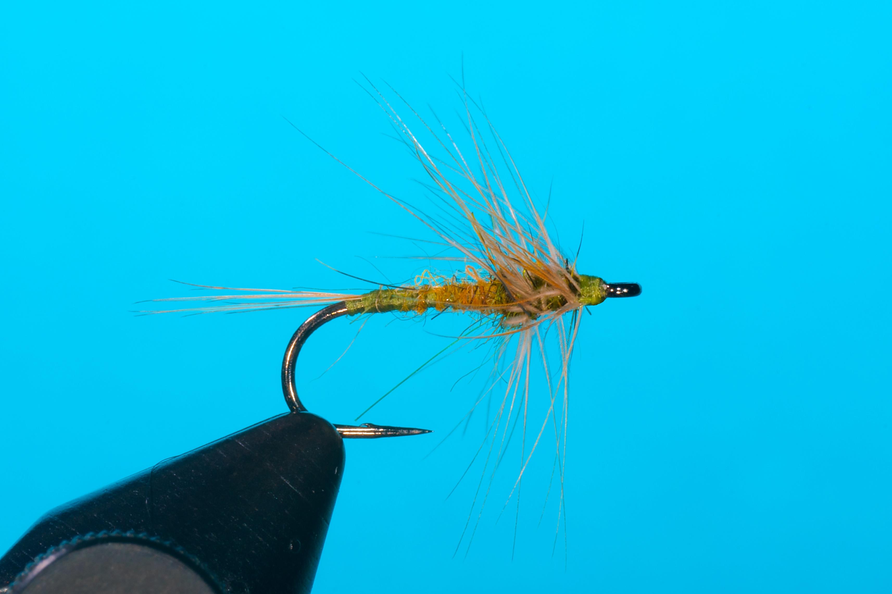 Forelle Äsche Fliegenbinden Blue Winged Olive BWO Flymph 4