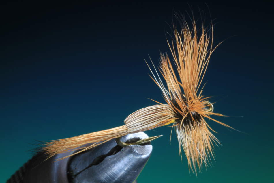 Forelle Äsche Fliegenbinden Barry Ord Clarke Humpy22