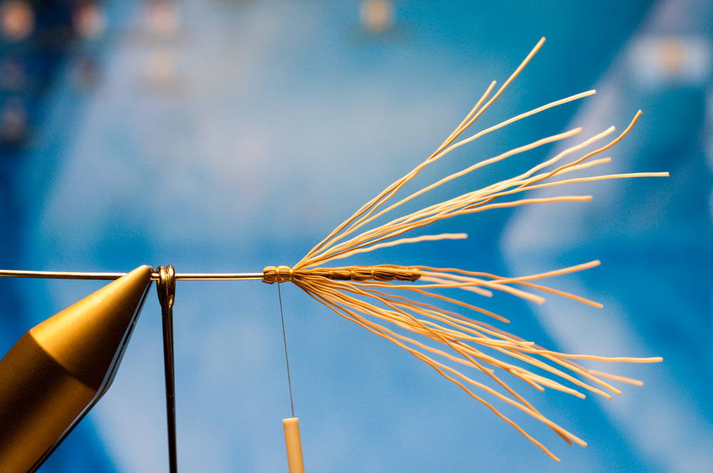 Forelle Äsche Fliegenbinden Schnake Crane Fly Daddy Long Legs11