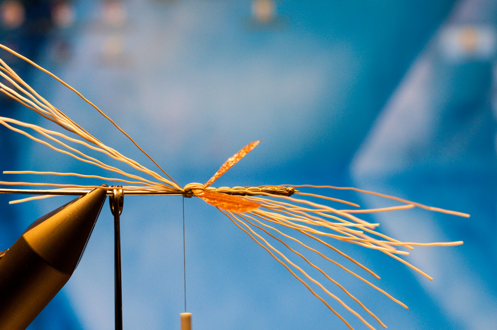 Forelle Äsche Fliegenbinden Schnake Crane Fly Daddy Long Legs13