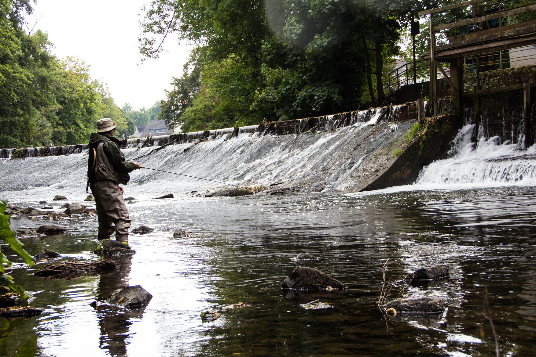 Forelle Äsche Fliegenfischen Urft Brückencast Tankred Gumpen