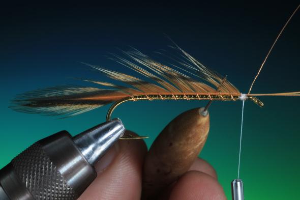 Forelle Äsche Fliegenbinden Barry Ord Clarke Matuka Streamer15