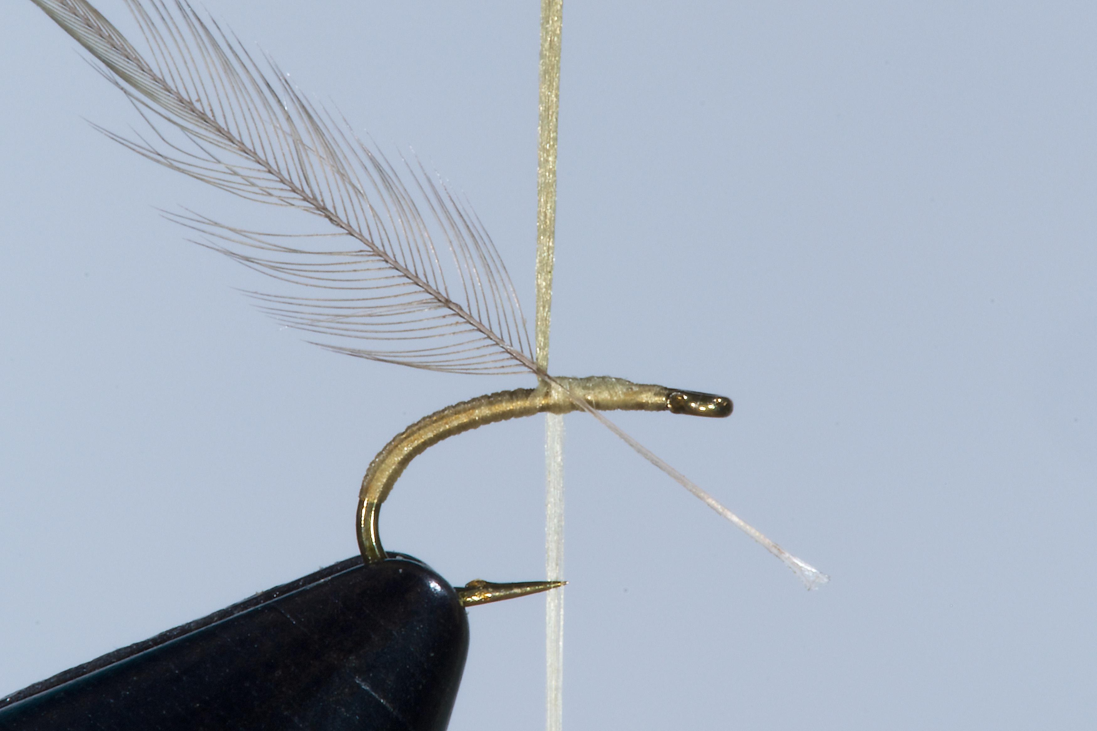 Forelle Äsche Fliegenbinden Walter Reisinger Pale Watery Dun1