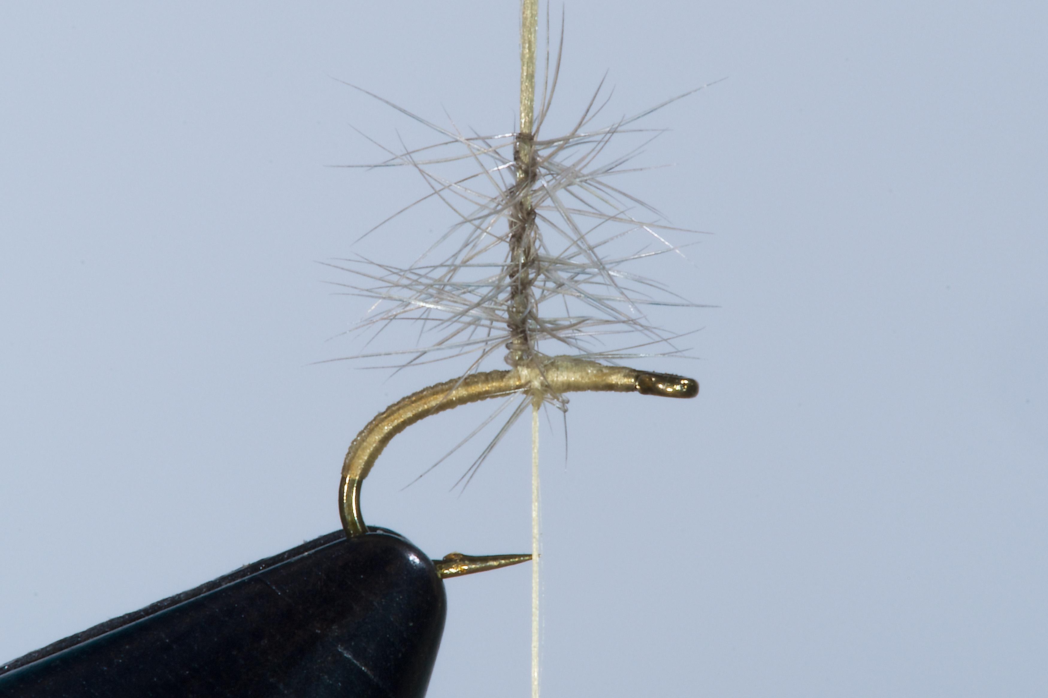Forelle Äsche Fliegenbinden Walter Reisinger Pale Watery Dun2