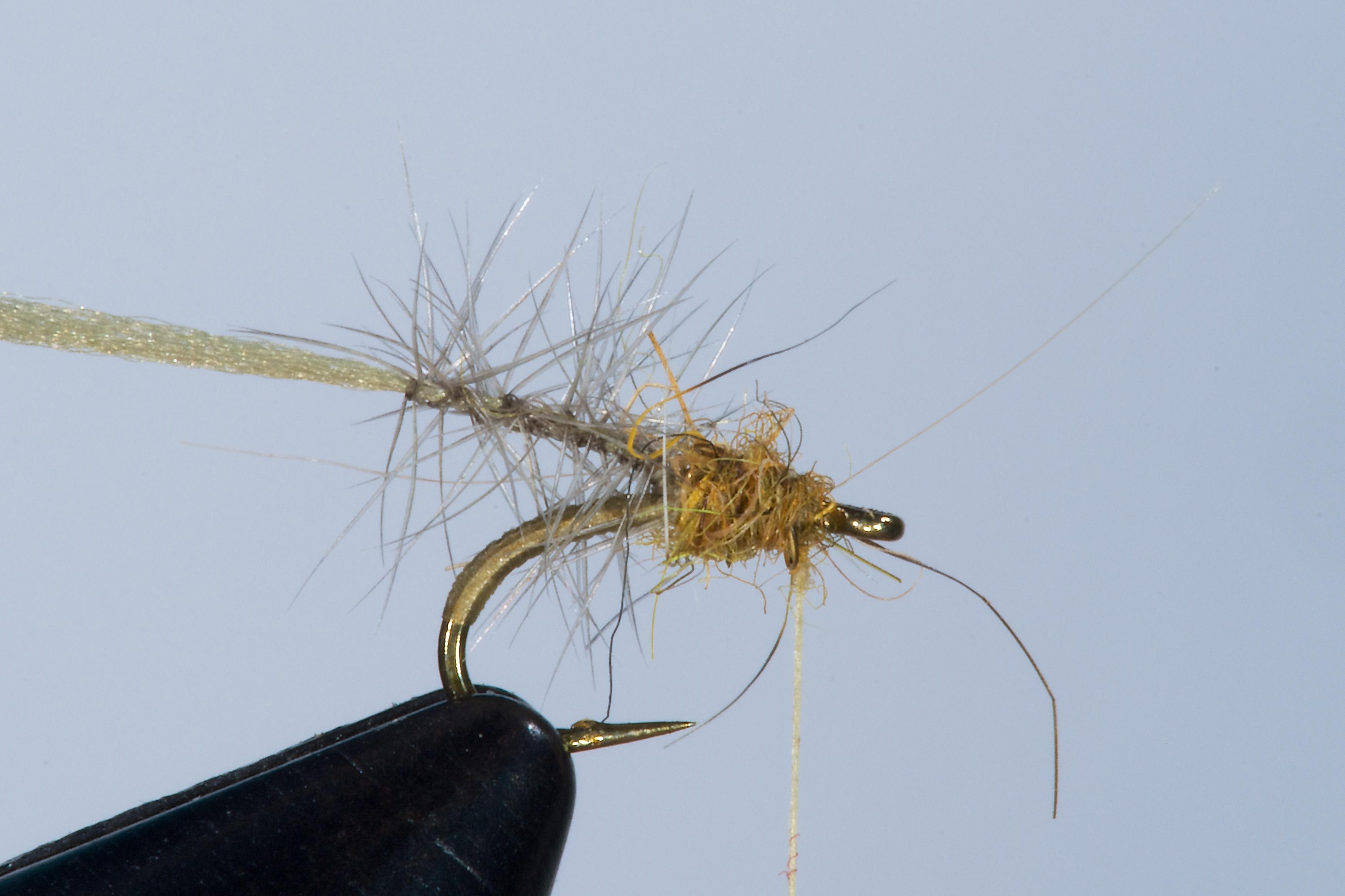Forelle Äsche Fliegenbinden Walter Reisinger Pale Watery Dun3