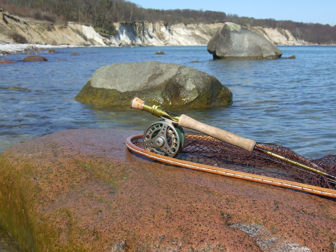Forelle Äsche Meerforelle Northguiding Ruegen