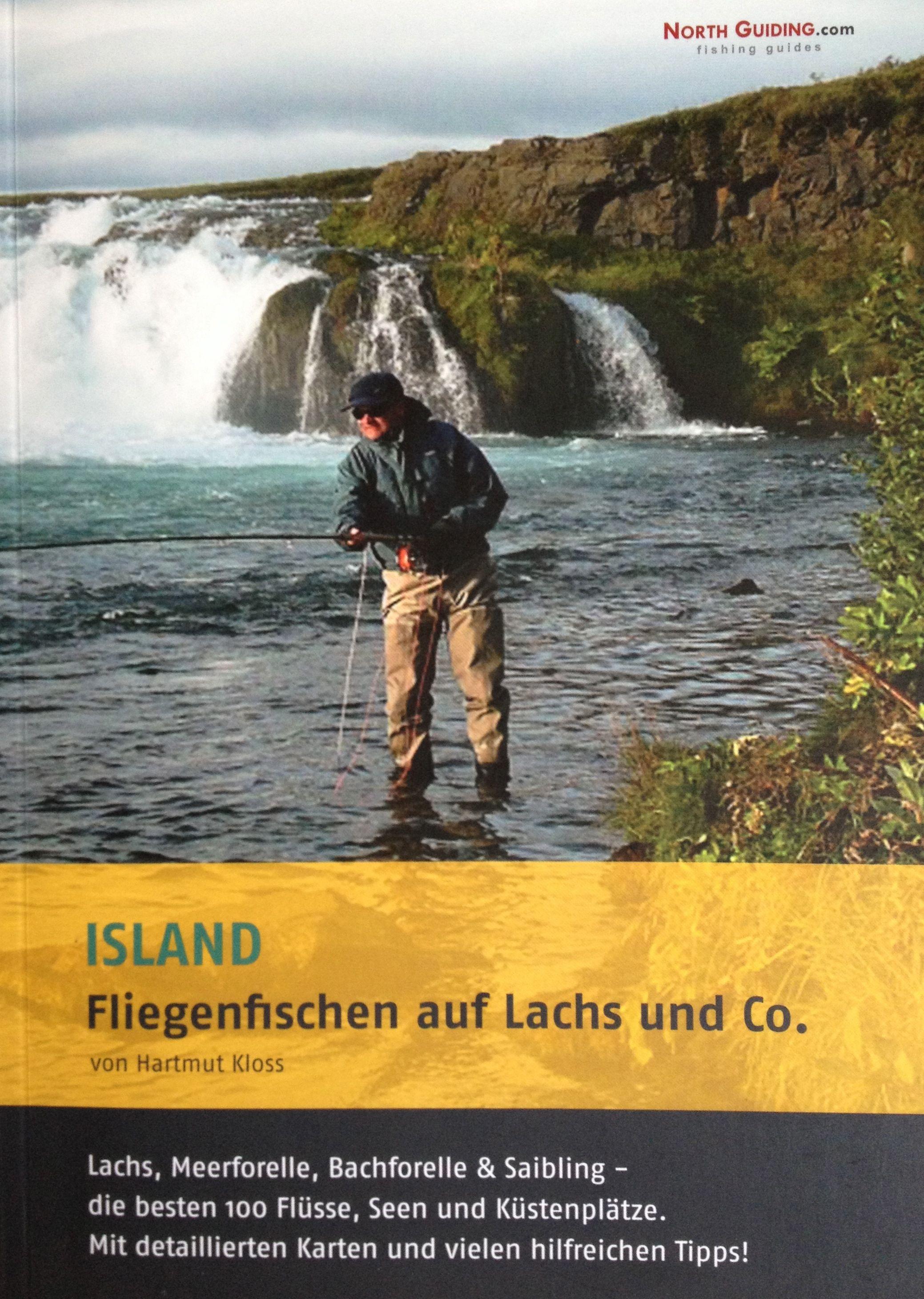 Forelle Äsche Fliegenfischen Island Northguiding