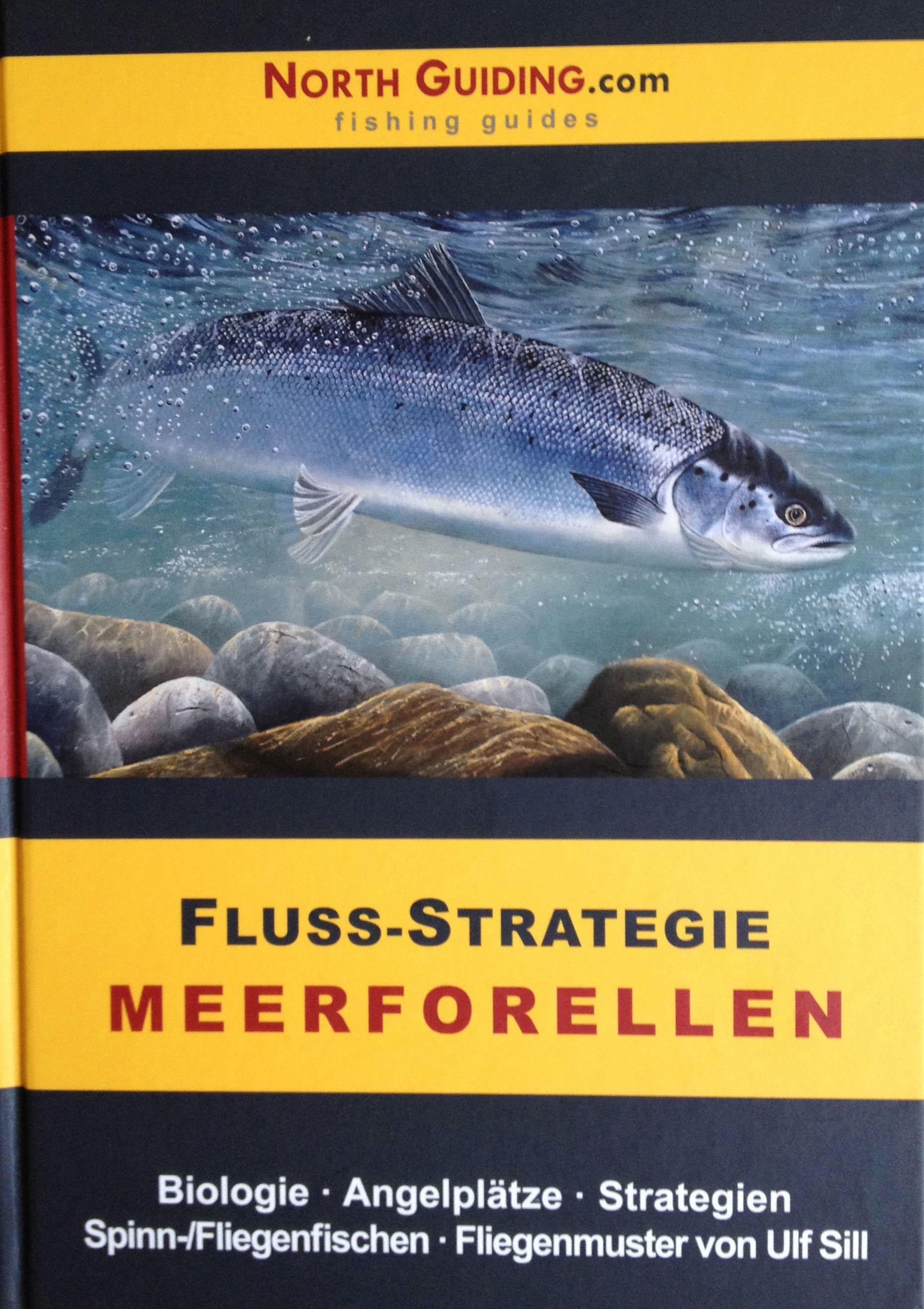 Forelle Äsche Fliegenfischen Meerforelle Fluss Northguiding