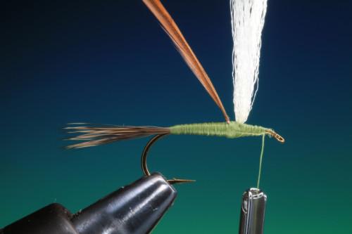 BOC Traditionelle Trockenfliegen18