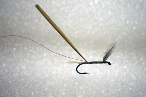 Fliegenbinden Baetis Rhodani Large Dark Olive Nymph