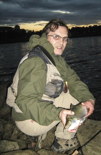 Fliegenfischen Rhein Rapfen
