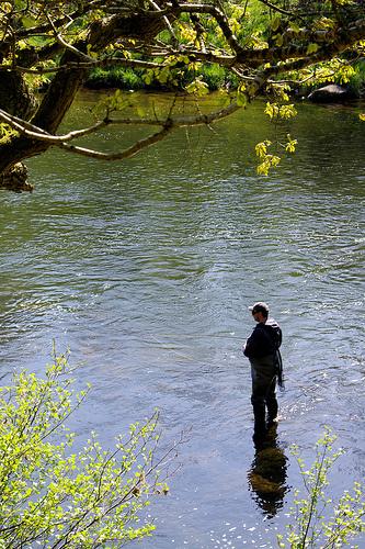River Eden © flickr: camera bag