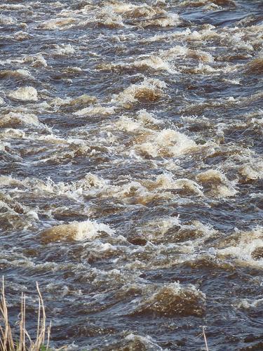 River Eden © flickr: Dirk Stursberg Photography
