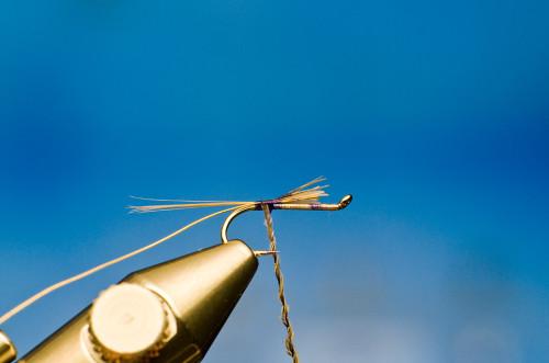 Sven Ostermann Fliegenbinden Kites Imperial