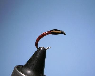 Fliegenbinden Buzzers Epoxy7