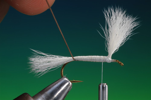 H&L Dry Fly 16