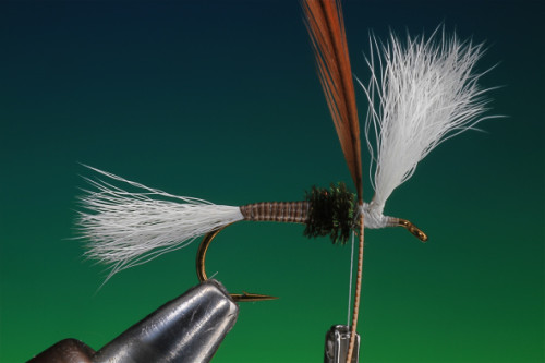 H&L Dry Fly 19