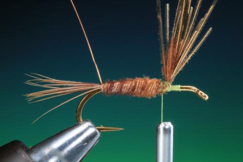 BOC PTN Pheasant Tail 9