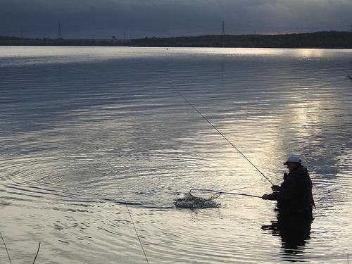 Stillwasser Fliegenfischen Fang