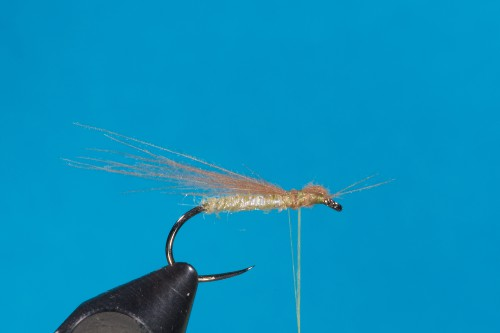 WR Buck Caddis Marbled Sedge6