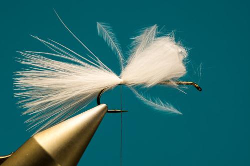 SO_Fliegenbinden_Cat's_Whisker1