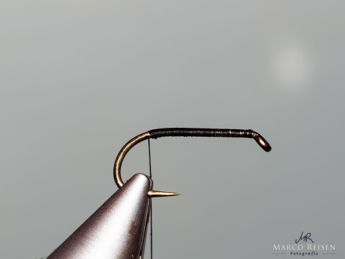 Marco Reisen beetle (2)