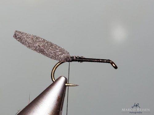 Marco Reisen beetle (3)