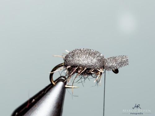 Marco Reisen beetle (6)