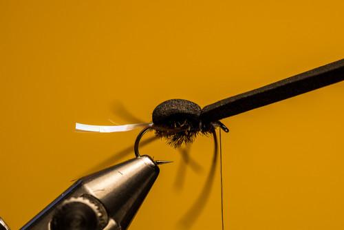 Sven Ostermann Beetle FdM-1723