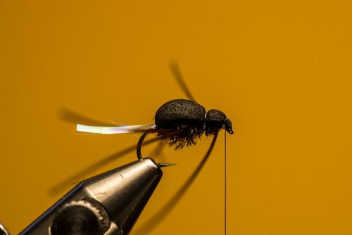 Sven Ostermann Beetle FdM-1724