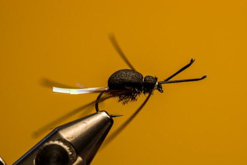 Sven Ostermann Beetle FdM-1725