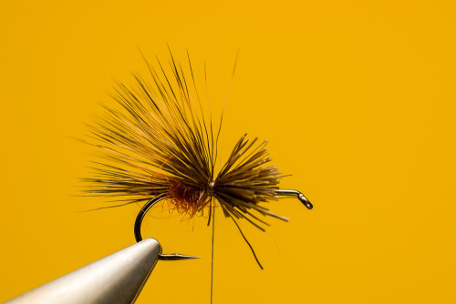 Sven_Ostermann_Brown_Sedge_Hog3