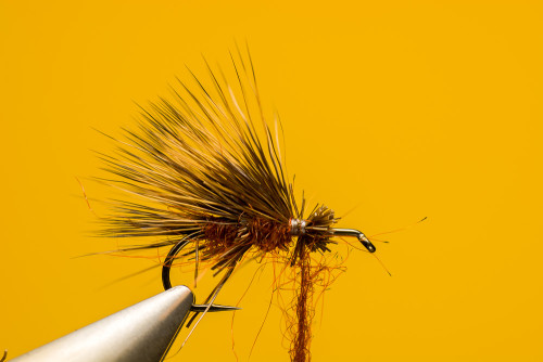 Sven_Ostermann_Brown_Sedge_Hog4