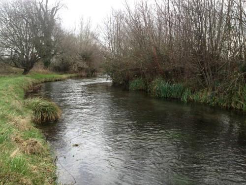 Fliegenfischen_River_Test_Herbst_Aesche7