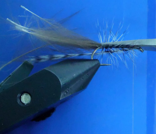 Oliver_Edwards_Sedge_Caddis_Dryfly_Trockenfliege5
