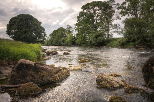 fliegenfischen_river_eden